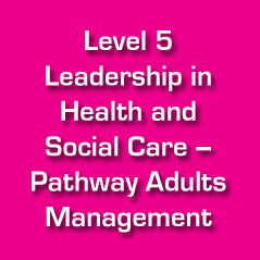 leadership and management in healthcare essay