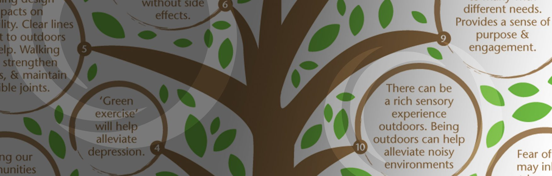 nature-in-dementia_blog-header